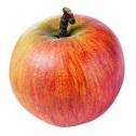 Modele jabłek
